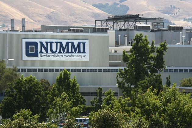 Picture of Nummi Plant
